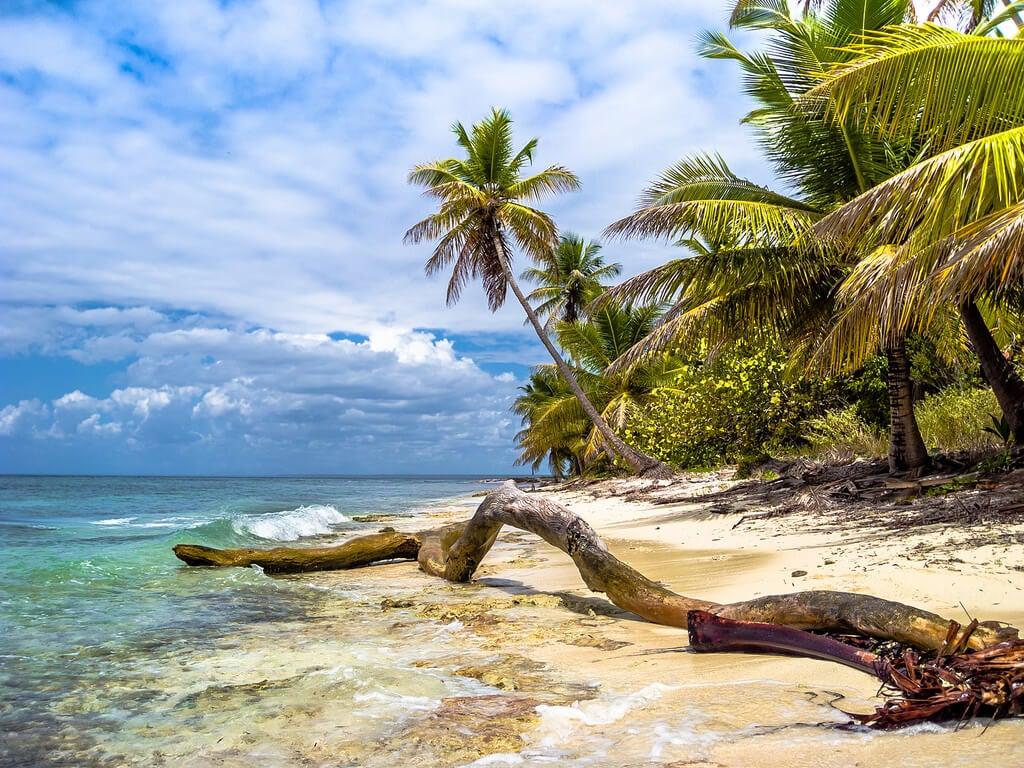 Paisaje de isla Saona