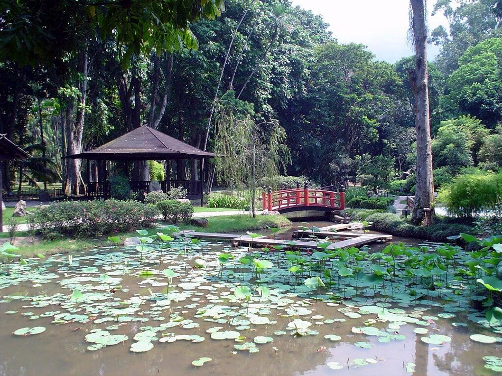 Jardín japonés en el Jardín Botánico de Río de Janeiro