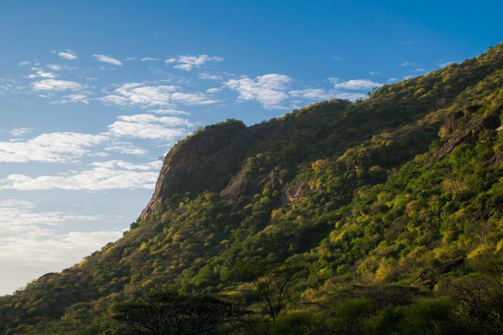 Vista de la ladera del monte
