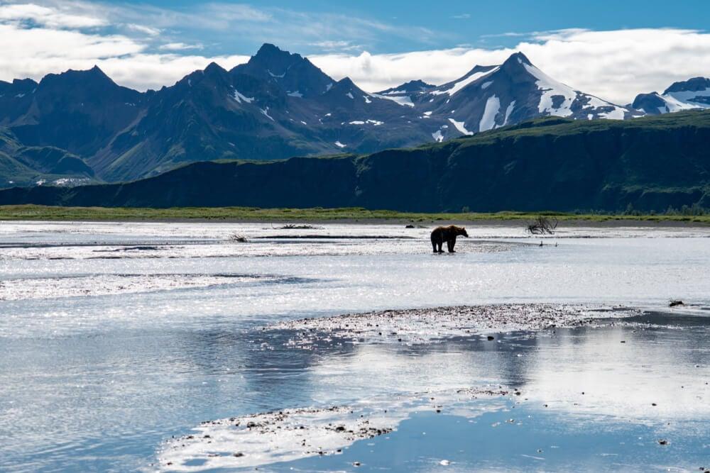 Visita el Parque Nacional Katmai en Alaska