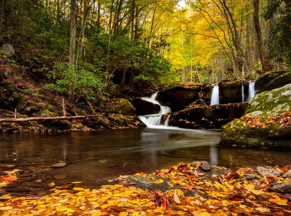 Paisajes en las Great Smoky Mountains