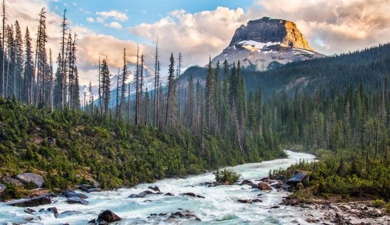 Descubre la belleza del Parque Nacional Yoho en Canadá