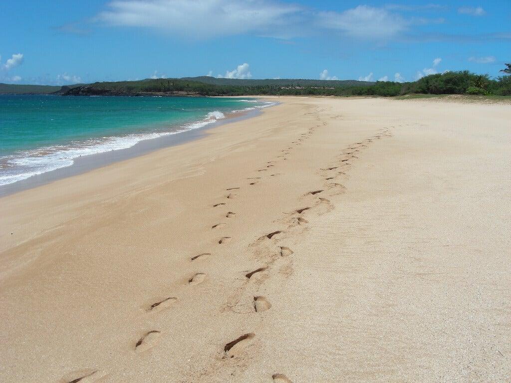 Pisadas en la playa Papohaku