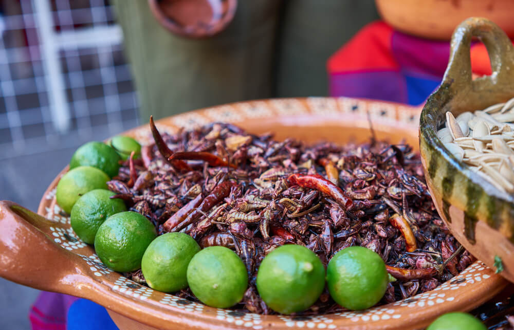 Lugares del mundo donde el menú incluye insectos