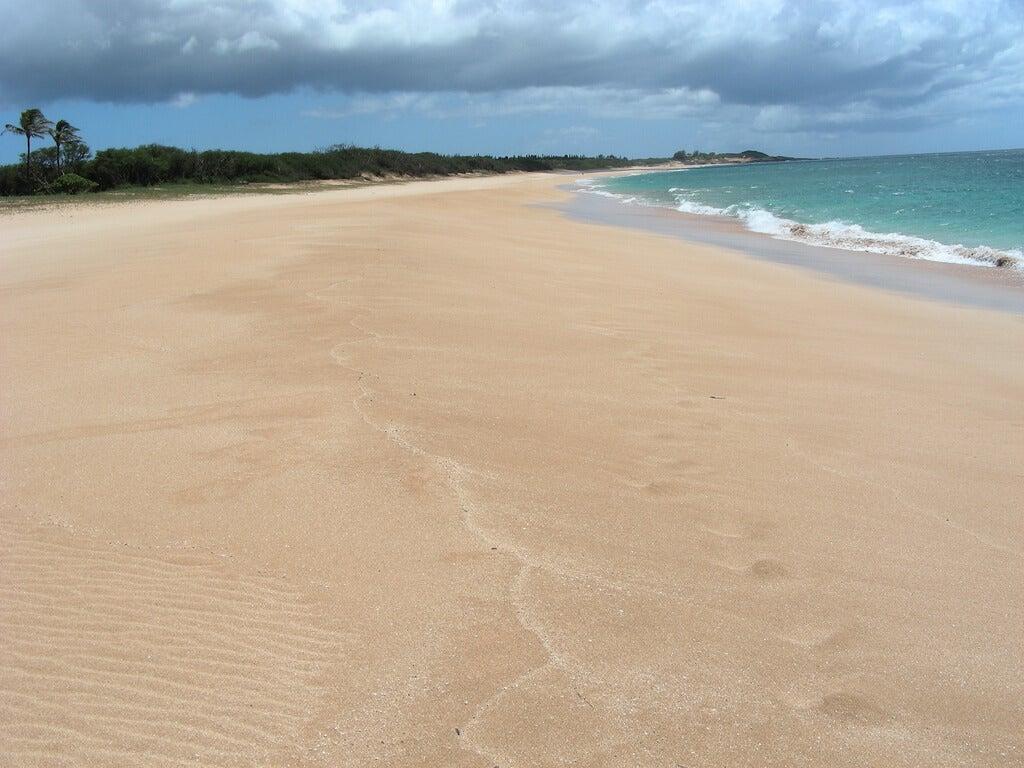 Playa de Papohaku
