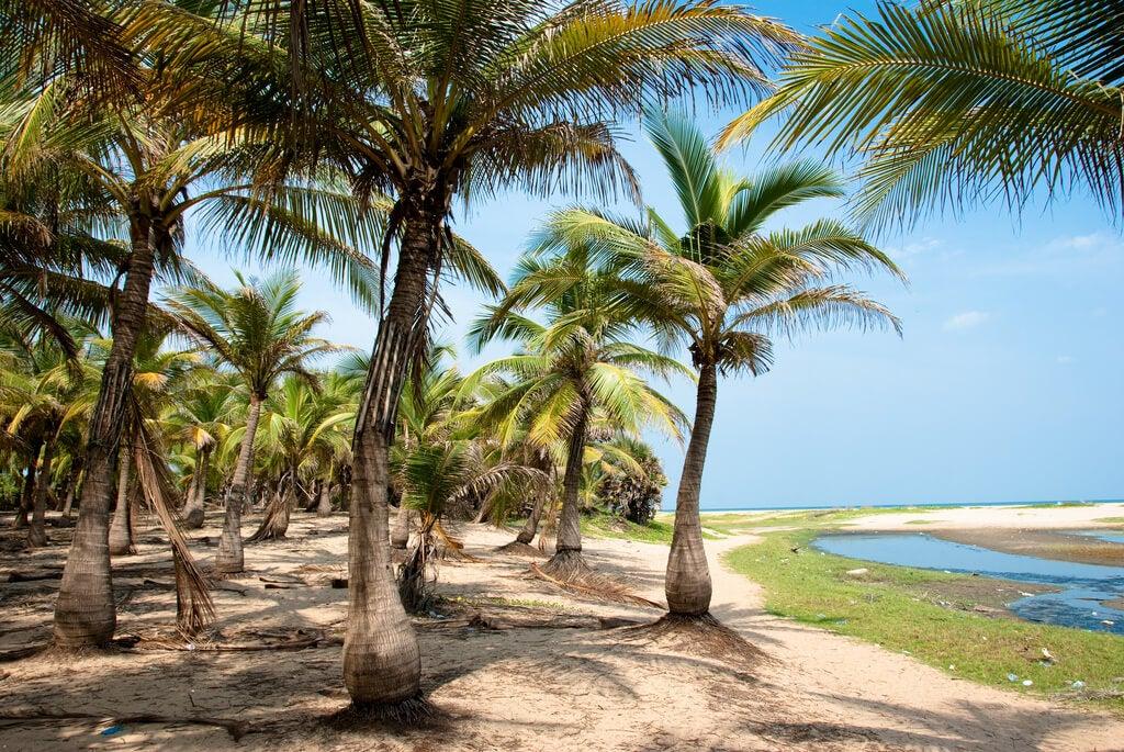 Playa en Pondicherry