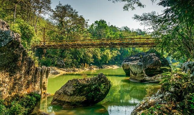 Puente colgante sobre el río