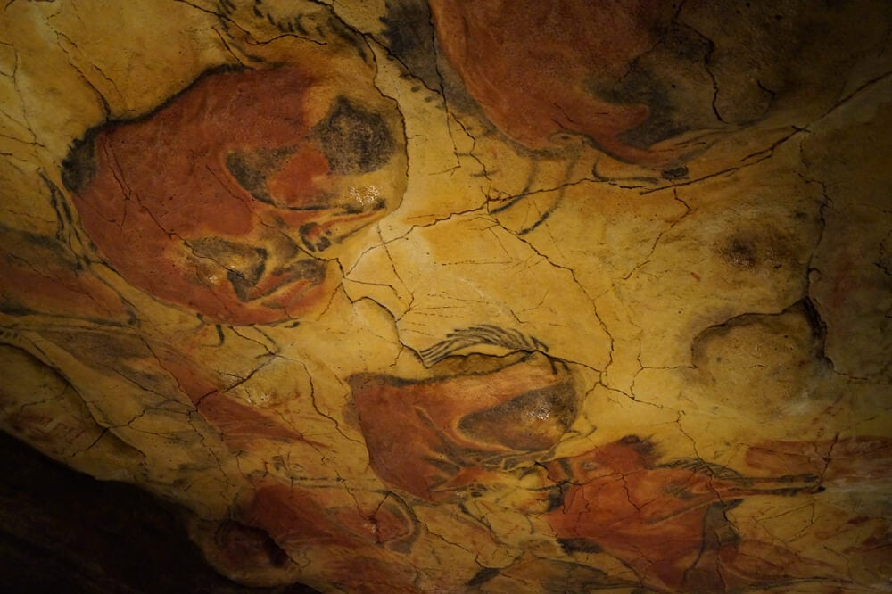 Visita el Museo de Altamira y la Neocueva en Cantabria