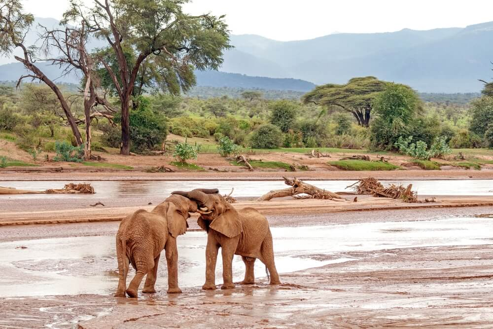 El monte Ololokwe en el salvaje condado de Samburu