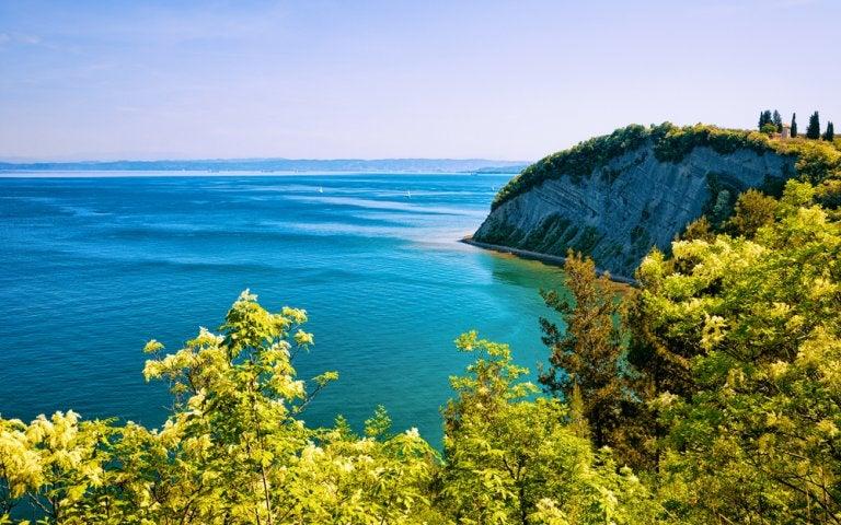 Reserva Natural de Strunjan: un tesoro en la costa adriática