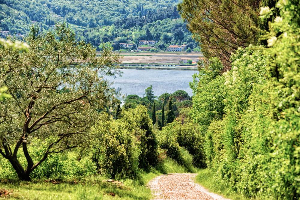 Vista de la Reserva Natural Strunjan