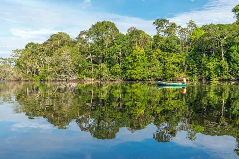 Todo lo que debes saber de la Amazonía boliviana