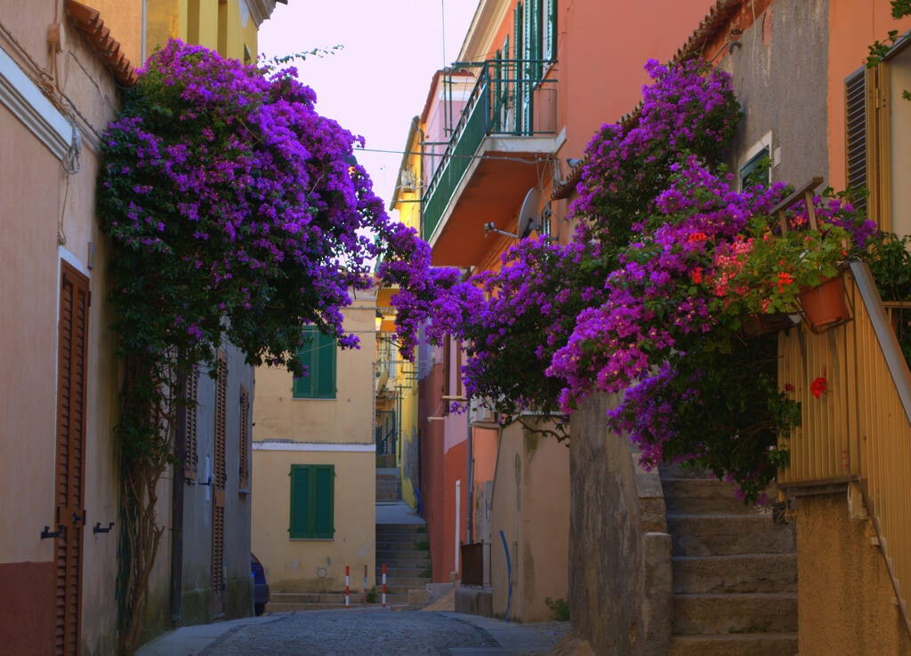Calle de la Maddalena