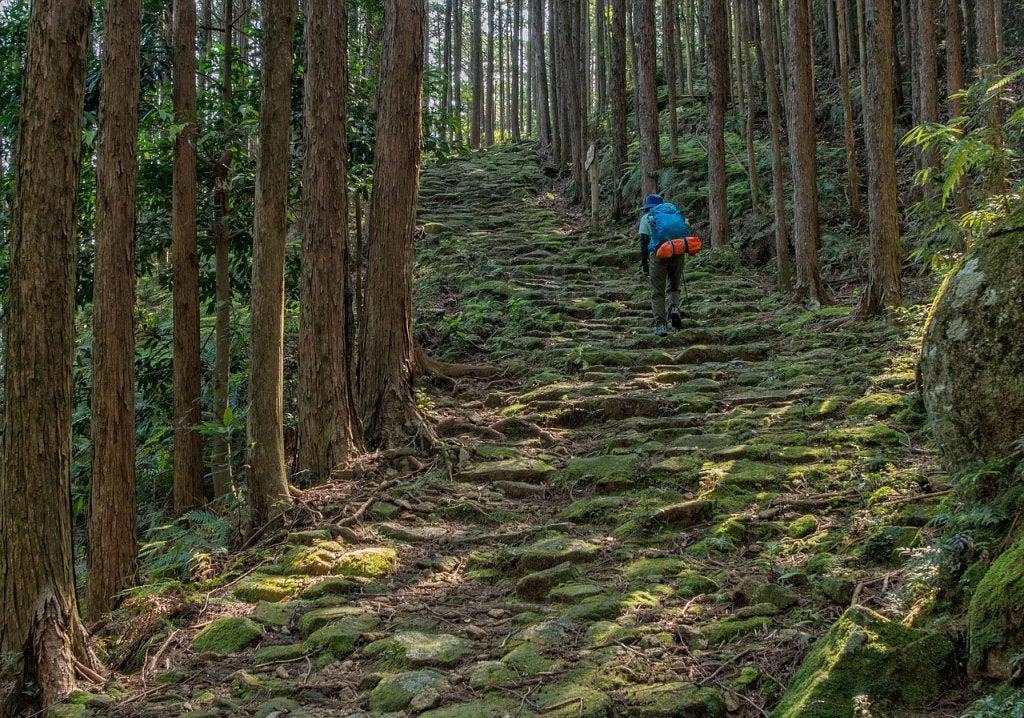 El camino de Kumano Kodo, una ruta famosa en Japón.