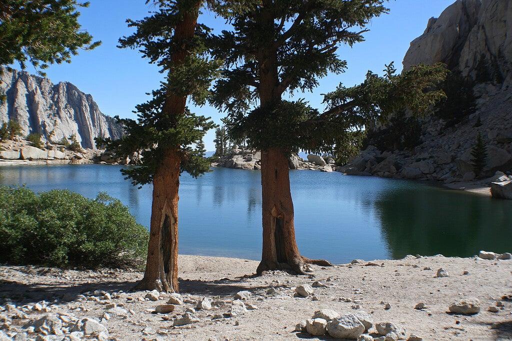 Vista del lago Lone Pine