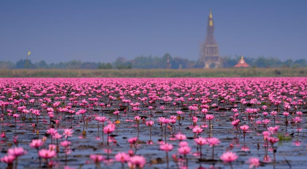 Lago Nong Hang