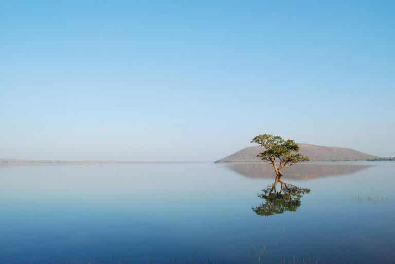 Lago Pakhal en la India: un lugar paradisíaco