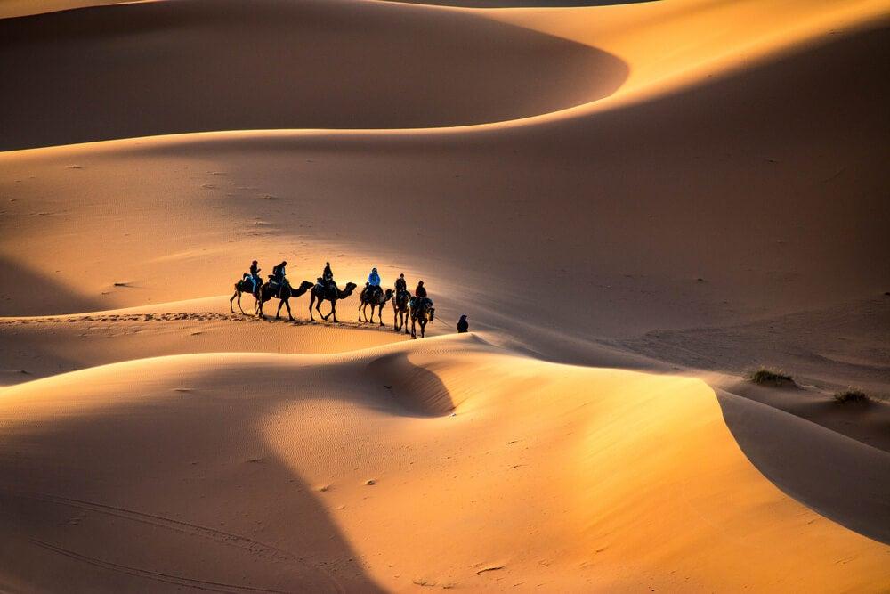 Excursión en camellos