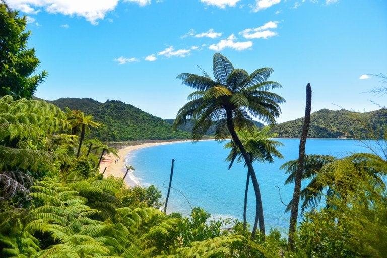 Descubre el Parque Natural Abel Tasman en Nueva Zelanda