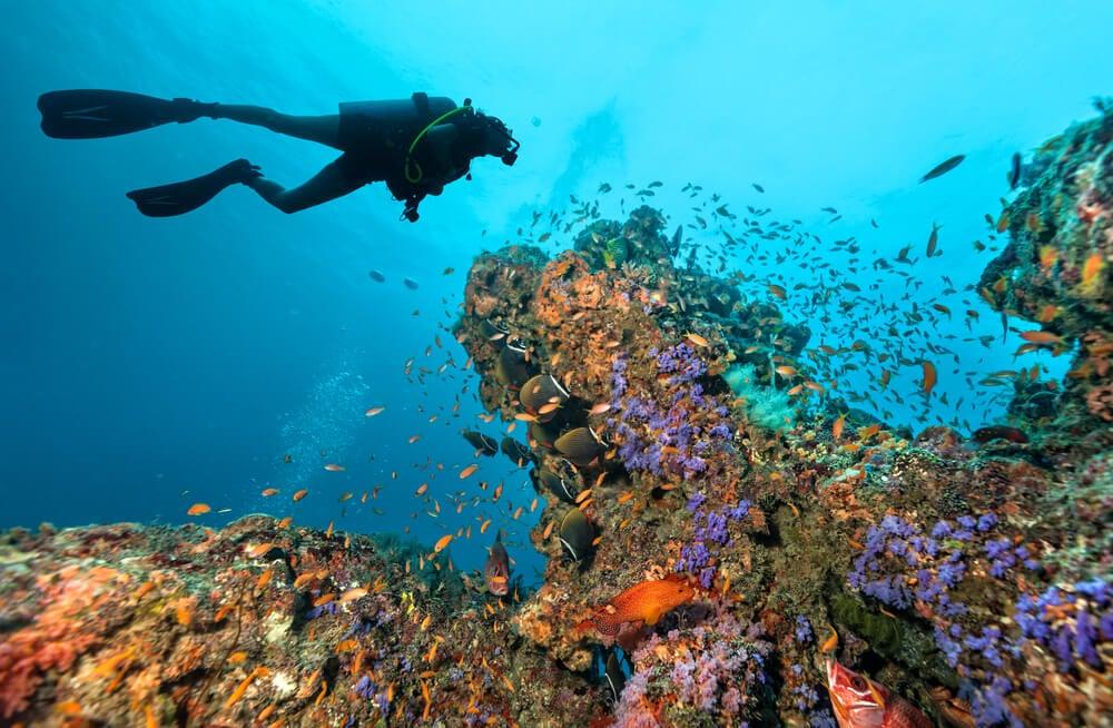 Buceador en Maldivas