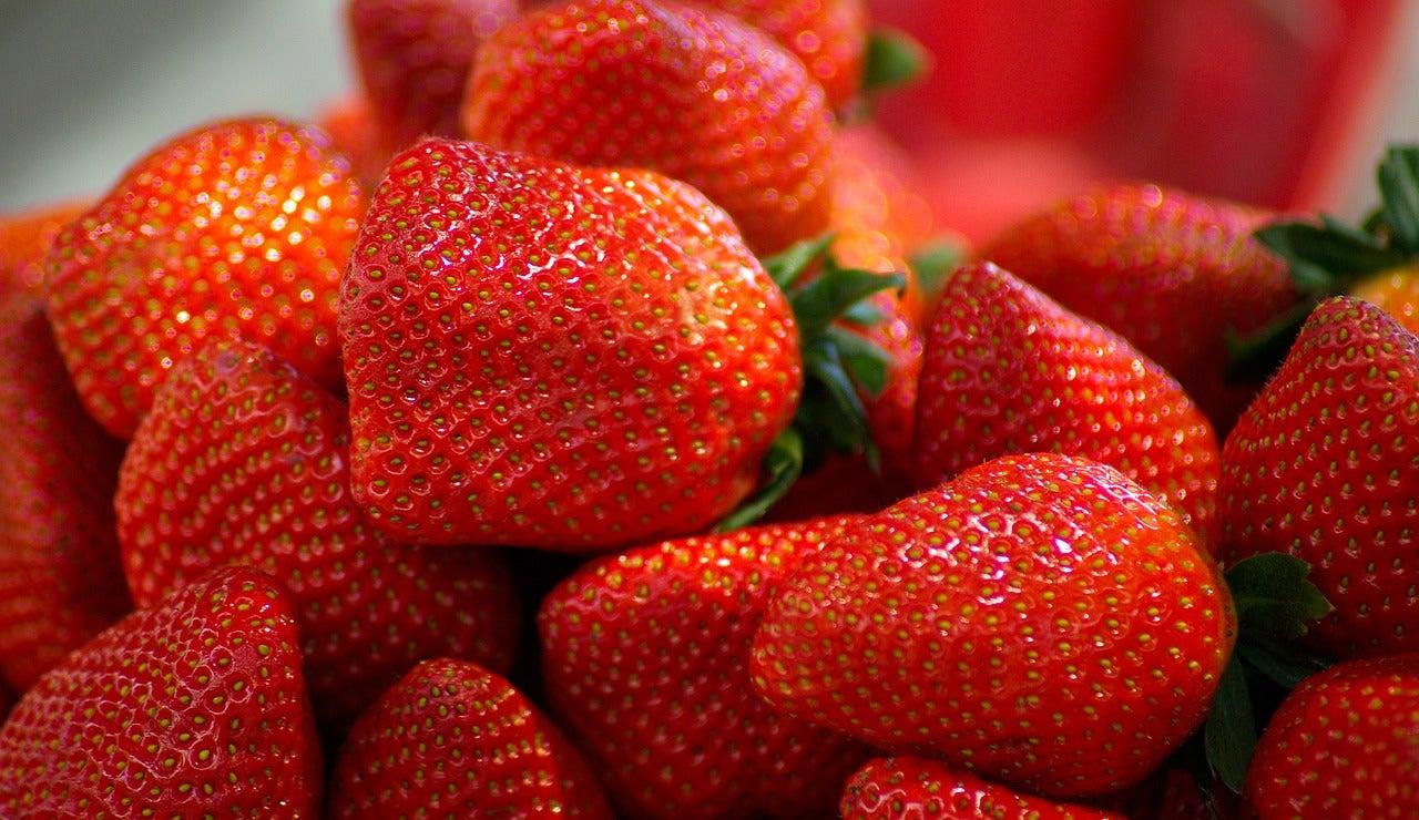 Plato de fresas