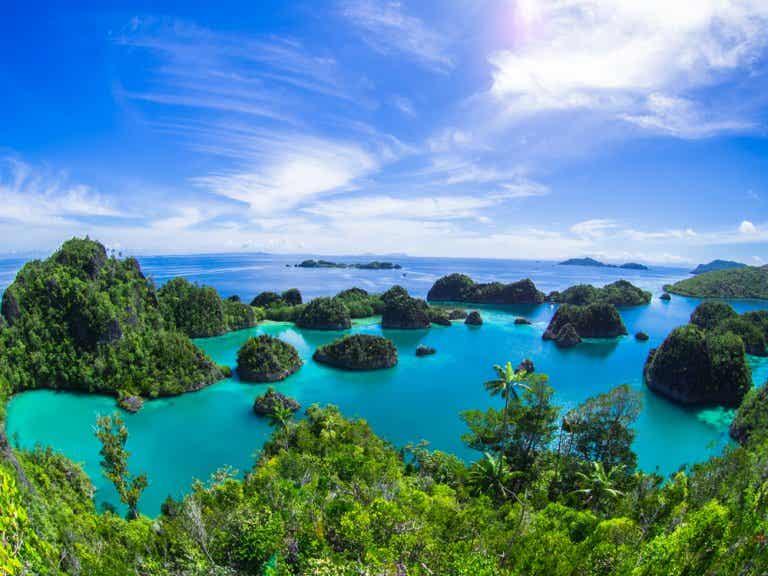 Isla Pianemo de Indonesia. ¿La vista más hermosa del mundo?
