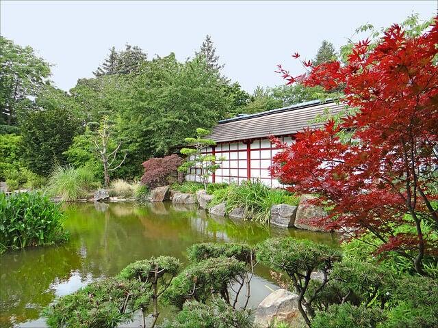 Vista del Jardín Japonés