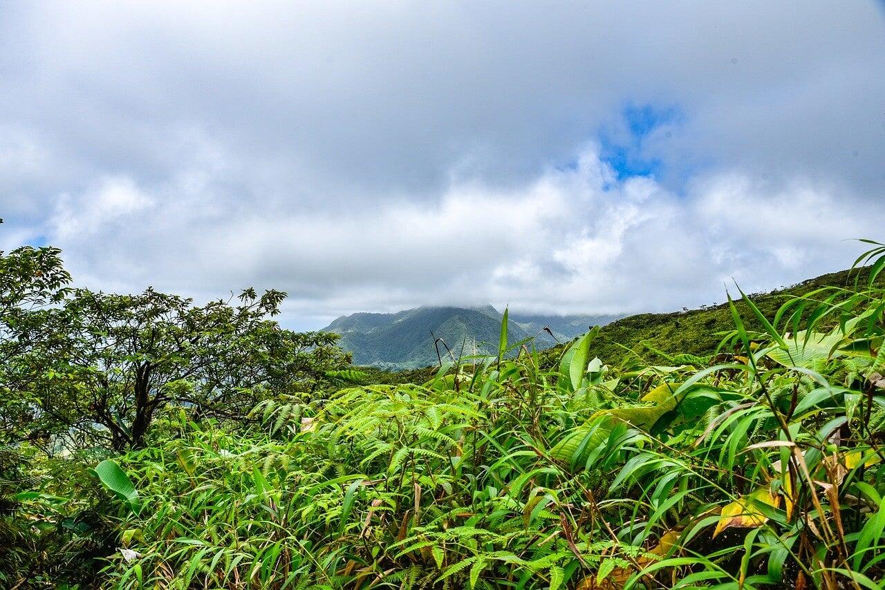 Volcán La Soufriére en isla Guadalupe