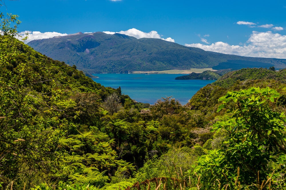 Las terrazas de silicato del lago Rotomahana en Nueva Zelanda