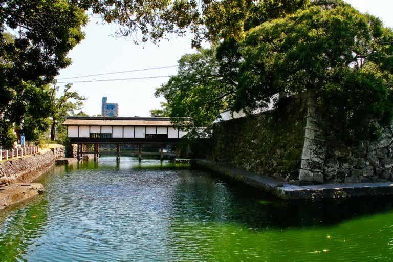 Qué hacer en Oita: una bella ciudad en la isla de Kyushu