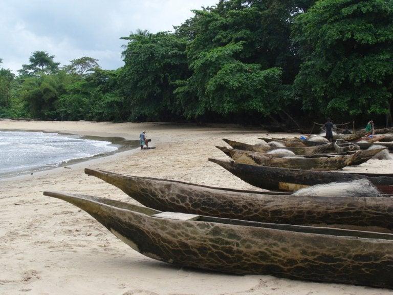 Una experiencia entre los pigmeos de Kribi, en Camerún