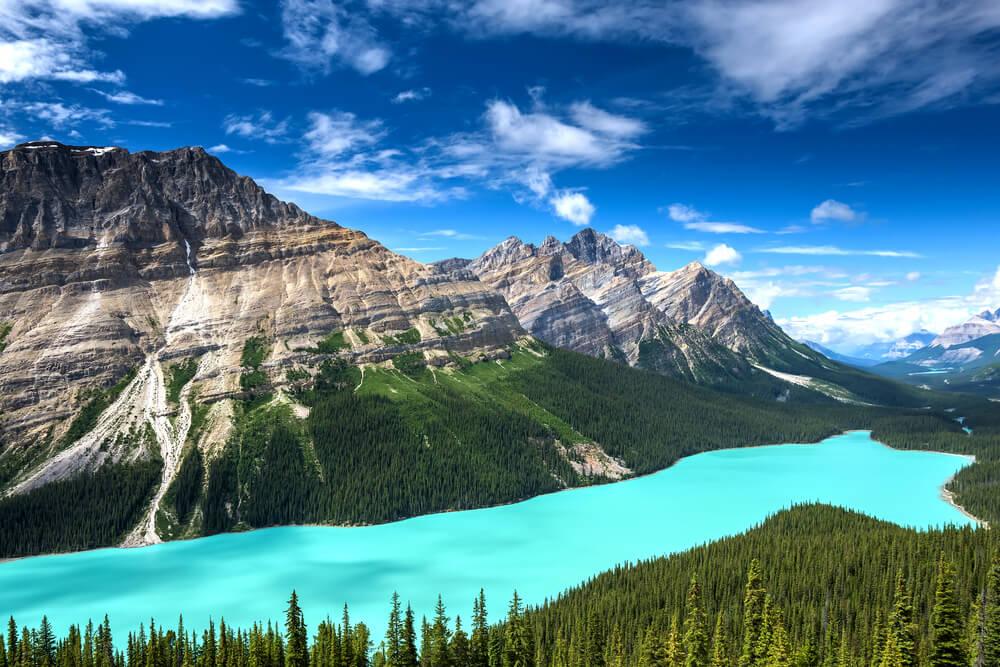 El lago Peyto, unas hermosas vistas de Alberta, en Canadá