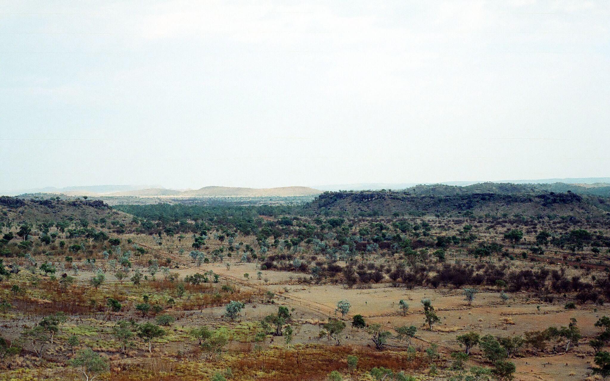 Riversleigh y los mamíferos fósiles australianos