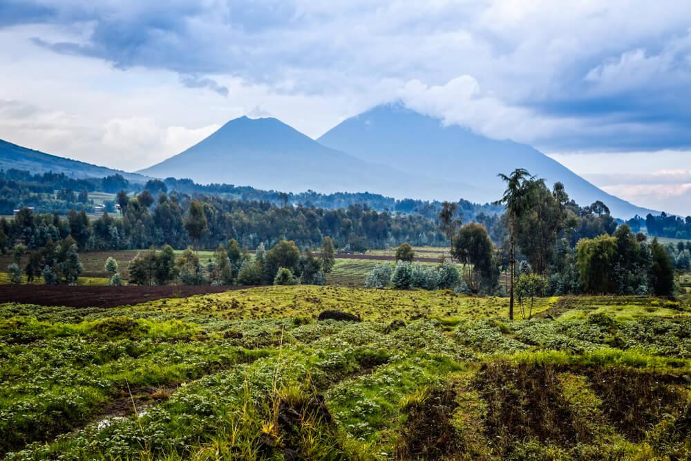 6 razones para hacer de Ruanda tu próximo destino