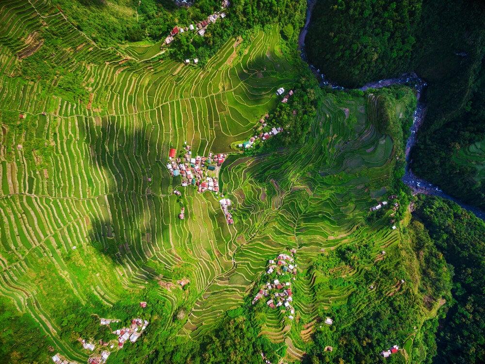 Vista aérea de las terrazas de arroz
