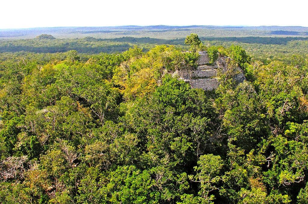 Vista de las ruinas de El Mirador