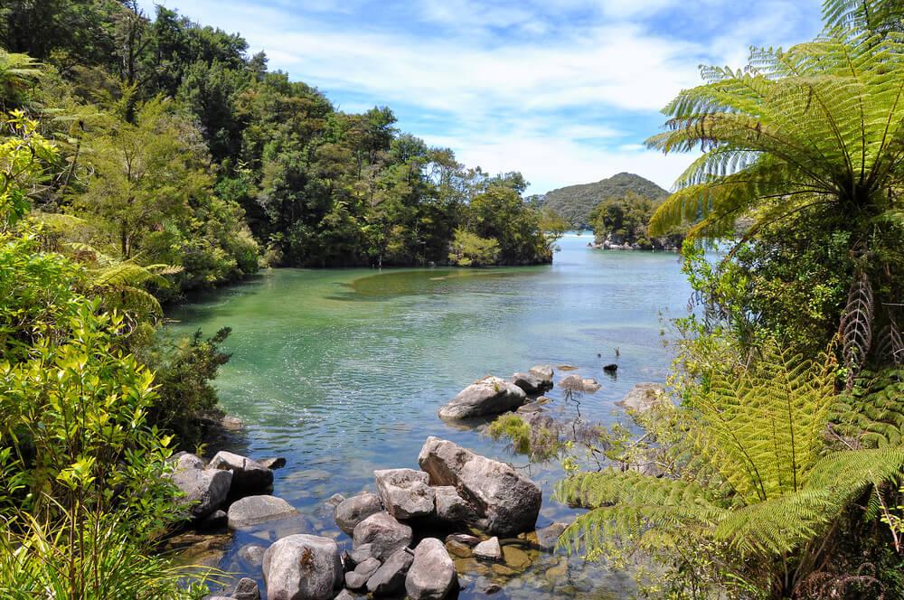 Parque Abel Tasman