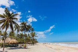 Playa en Palomino