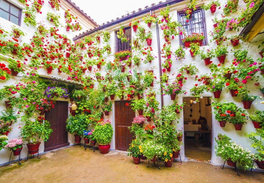 Patio en la Fiesta de los Patios de Córdoba