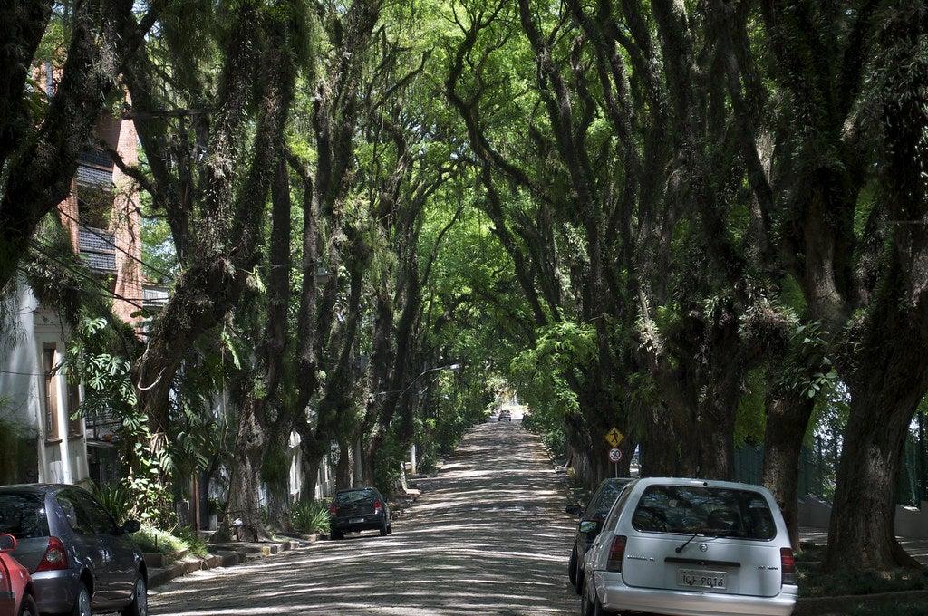 Vista de la calle Rua Gonçalo de Carvalho