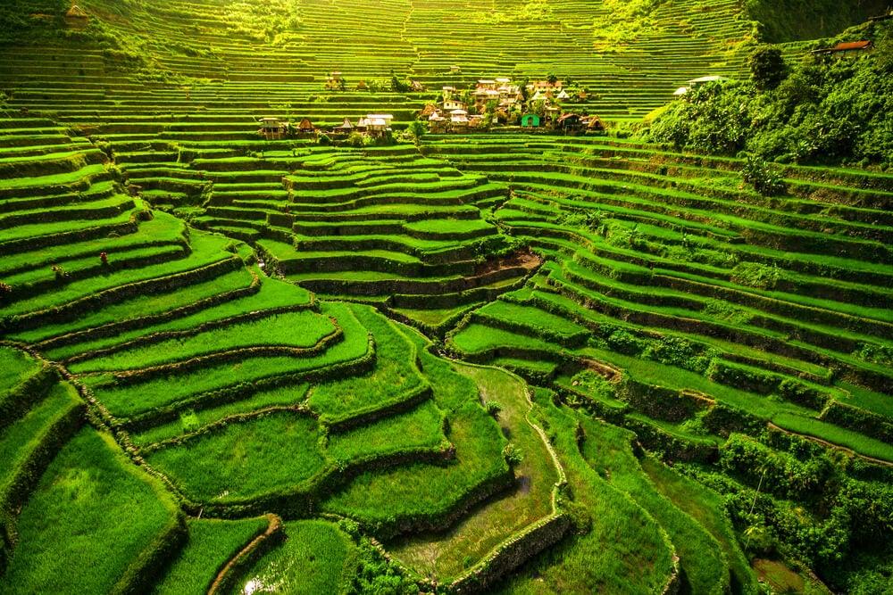 Las terrazas de arroz en la isla de Luzón, Filipinas