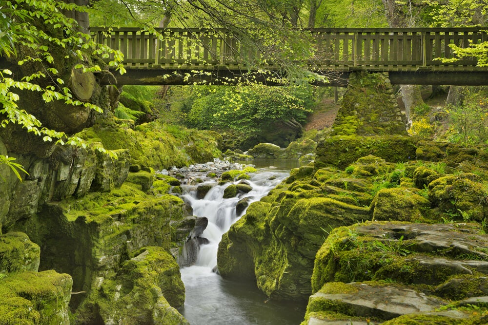 Parque Forestal Tollymore, lugar de rodaje de Juego de Tronos