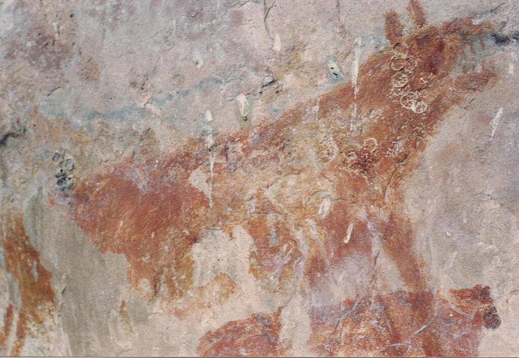 Petroglifo en Chiribiquete