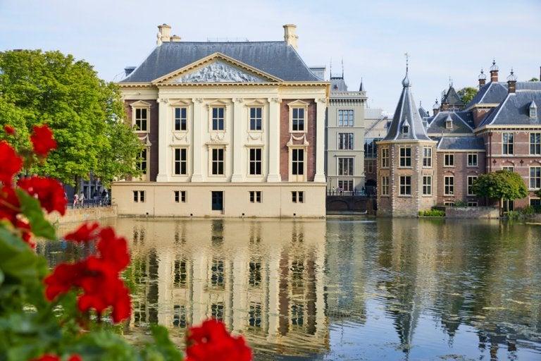 Galería Mauritshuis: 'La joven de la perla' y otras obras maestras