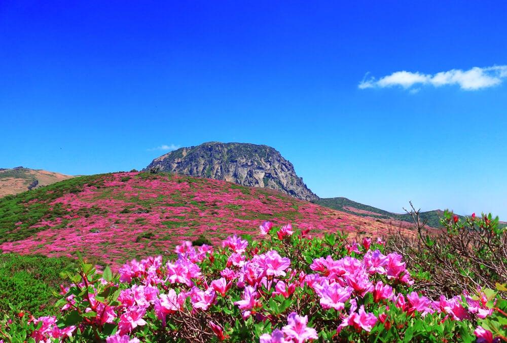 Monte Hallasán, uno de los parques naturales de Asia