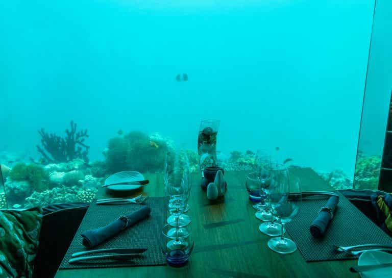 Los 10 restaurantes más extraños del mundo