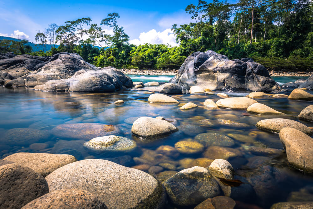 Río en la reserva del Manu