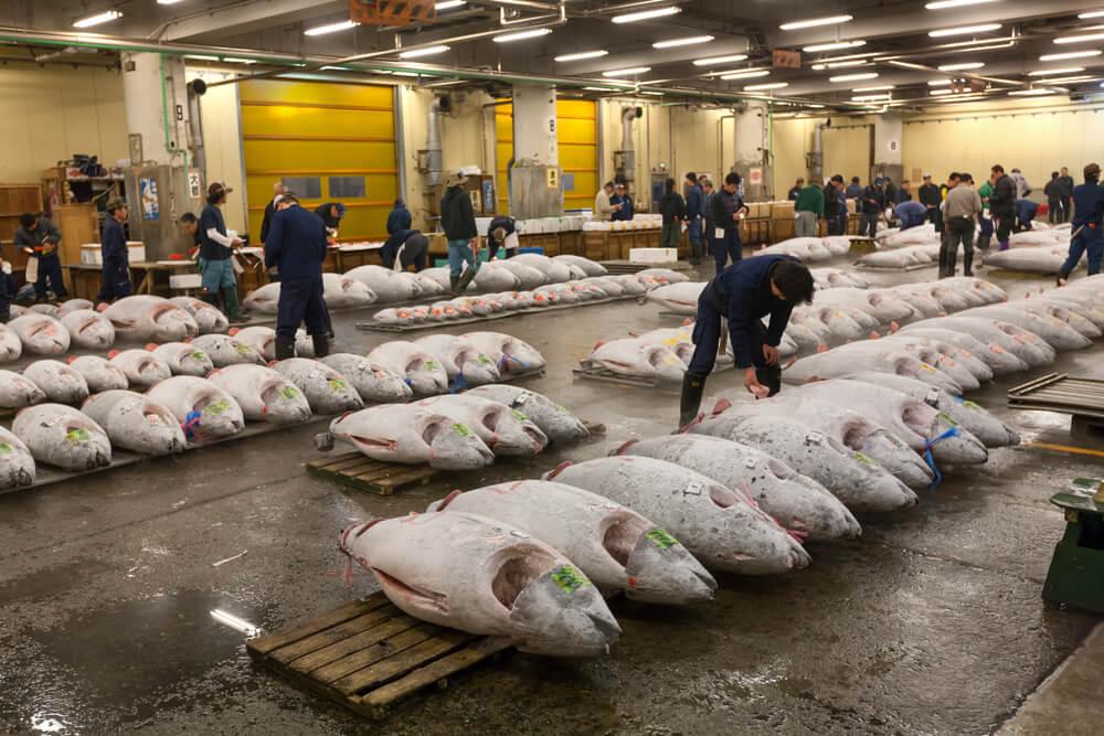 Tsikiji, uno de los mercados más interesantes