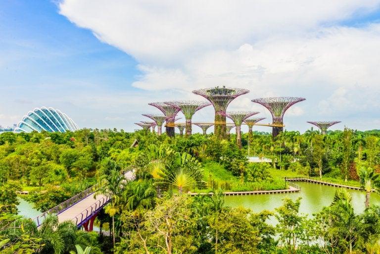 Los árboles mágicos de Gardens by the Bay en Singapur