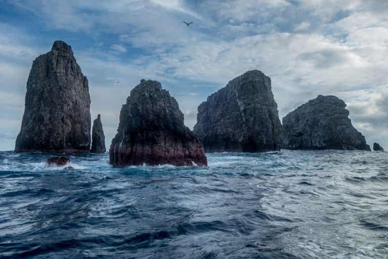 Malpelo, un santuario natural en alta mar